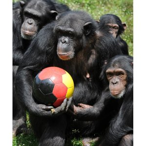 German Chimpanzees